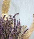 Online Ανθοπωλείο – Λουλούδια – Αποστολή Λουλουδιών