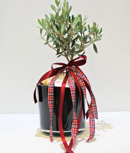 Χριστουγεννιάτικες συνθέσεις λουλουδιών-6